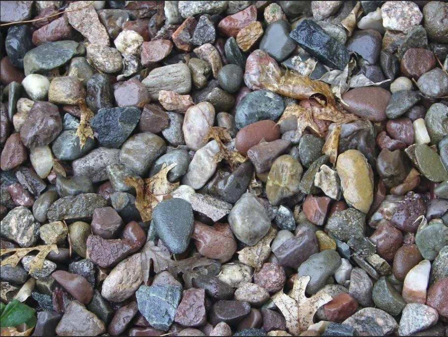 looking patterns ?  - find the frog)