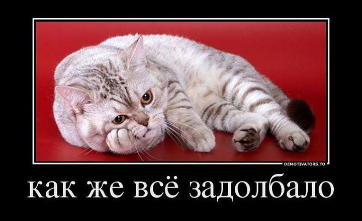 устал ...
