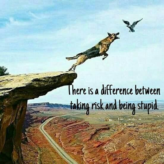difference b/w risk and stupidity . . . .