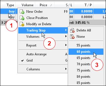 图 5. 在终端中启用标准追踪止损。