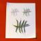 Strings: Tabelle mit ASCII Zeichen und ihre Verwendung