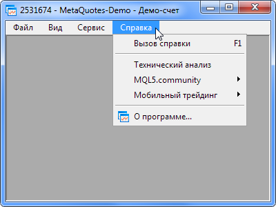 Fig. 1. Main menu in the MetaTrader 5 terminal