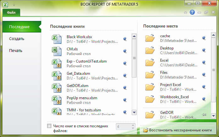 Fig. 15. BOOK REPORT application in Excel 2010