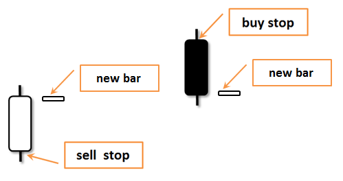Fig. 6. Trading System