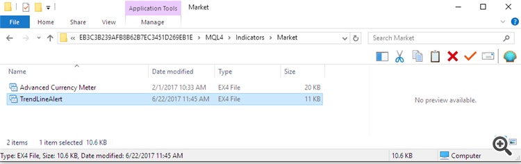 Market directory in file system with file from market place
