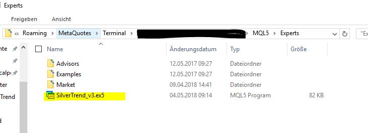 2. ex5 Datei in Dateiordner des MT5 kopieren