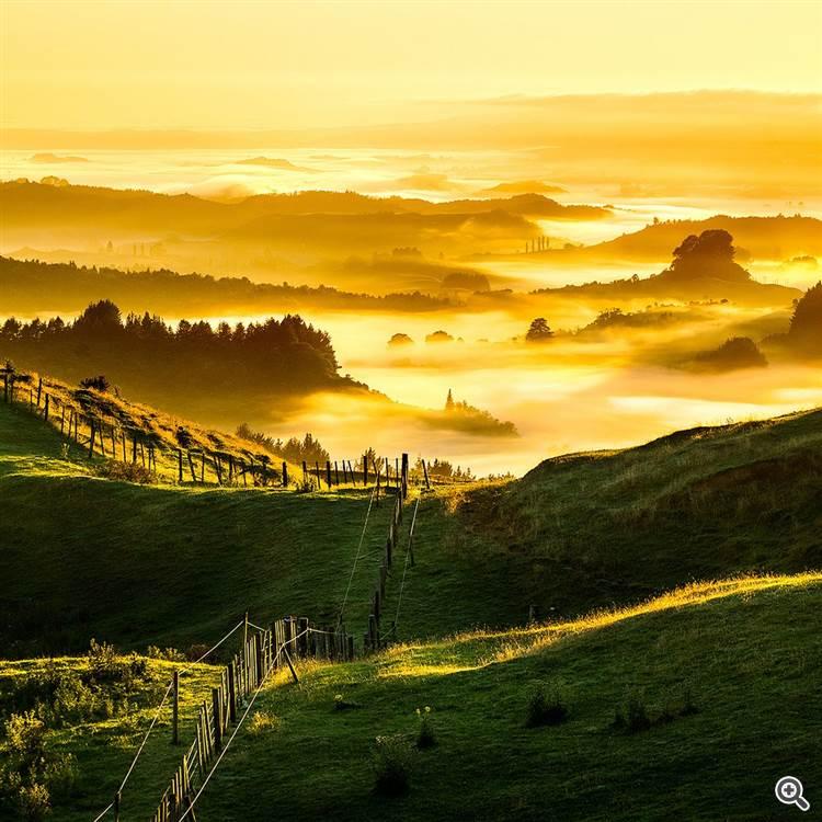 New Zealand Foggy Golden Sunrise