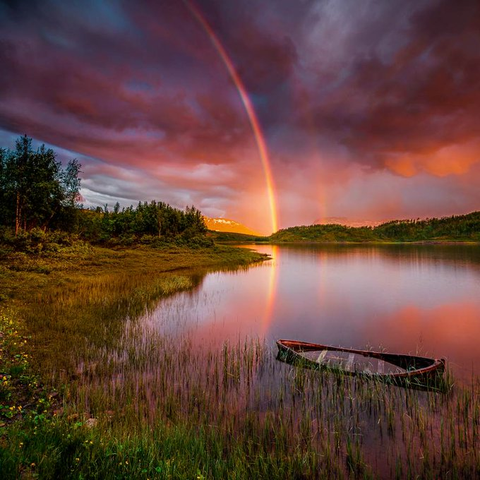 Rainbow over the lake and forest on a summer day