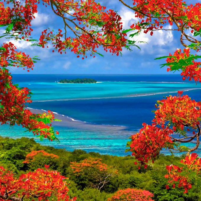 Stunning blue ocean and red tropical jungle