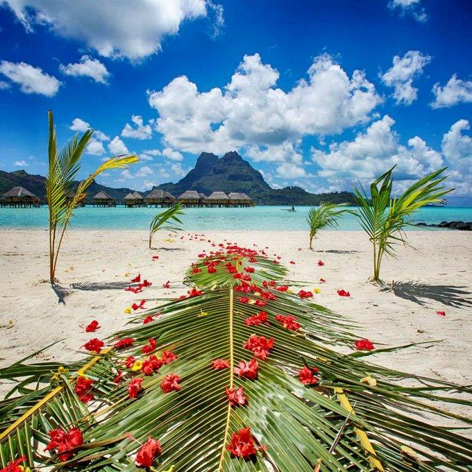 Green mountains and tropical blue lagoon in Bora Bora