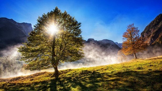 Magical sunrise over the mountain forest and gorgeous sunny day