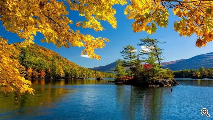 Golden sugar maple leaves frame a sunny autumn day on the lake
