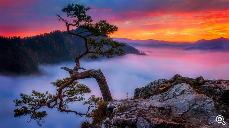 Magic foggy morning with clouds rolling over beautiful mountains at sunrise