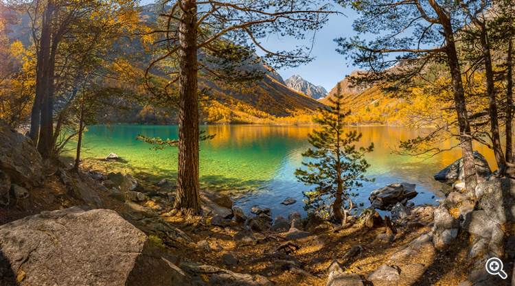 Emerald lake surrounded by larch trees forest and mountains
