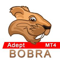 Bobra Adept MT4