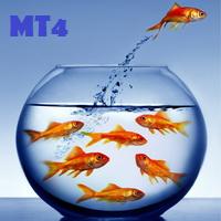 Be Free mt4