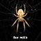 Spider Grid mt5
