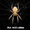 Spider Grid Mt5 Plus