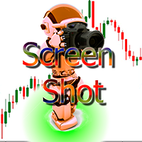 ScreenShot Automatic