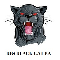 Big Black Cat EA