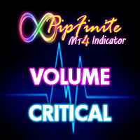 PipFinite Volume Critical