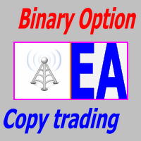 Binary Option Copy Trading