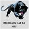 Big Black Cat EA MT5