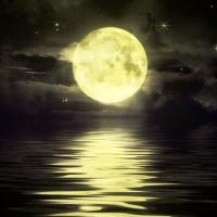 Quiet Moon MT5
