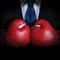 Boxer Plus