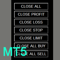 Close Button MT5