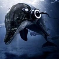 Dolphin EA