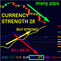 Advanced Currency Strength28 MT5