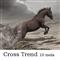 CrossTrend