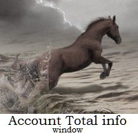 Account Total info Window