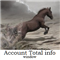 Account Total info Window