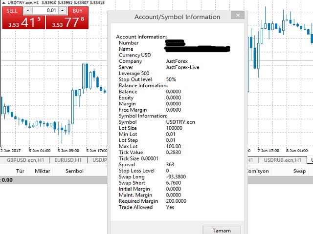 AccountInfo