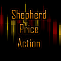 Shepherd Price Action
