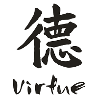 VirtueMultiLot