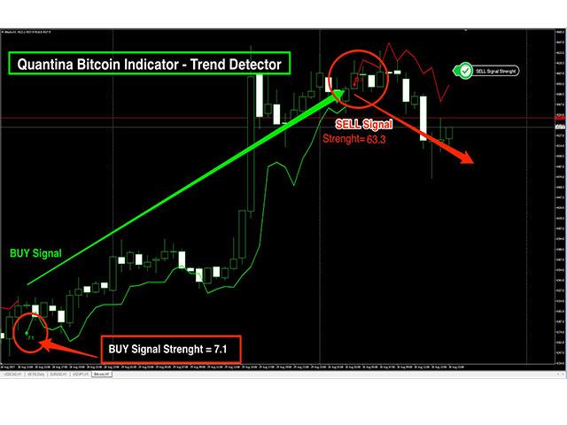 Quantina Bitcoin Indicator