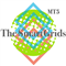 The SmartGrids MT5