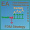 FDM Strategy