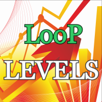 Loop Level