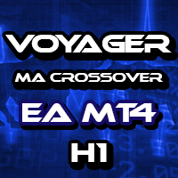 Voyager MA Crossover Gold H1