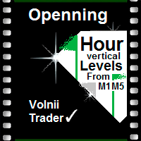 Opening Hours Vertical Levels