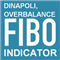 DiNapoli Fibo Overbalance Multi Tool