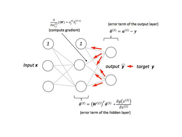 Neural Tick