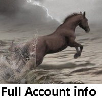 Full Account info