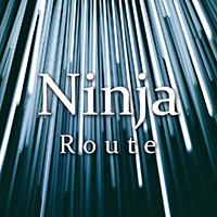 Ninja Route MT5
