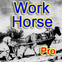 Work Horse Pro