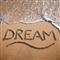 Dream Indicator 4